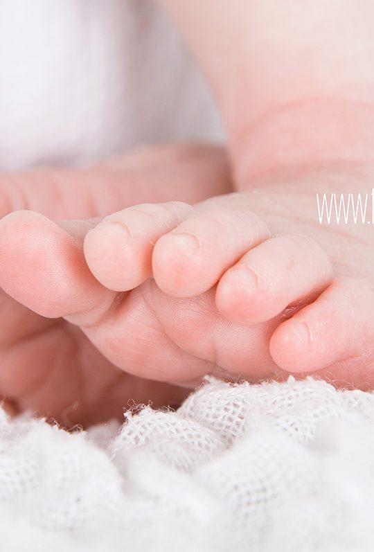 fotografia bebes recien nacidos